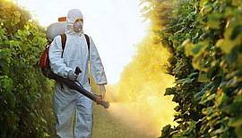 Atelier Web Reporter CINOR - Les produits chimiques dans l'agriculture – CM2 La Chaumière